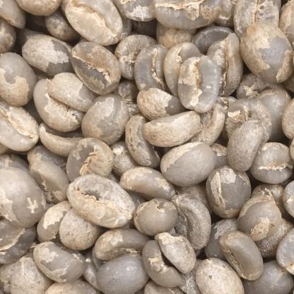 マラウイコーヒー生豆