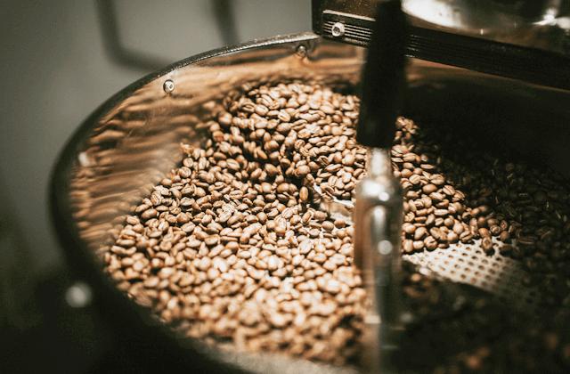 焙煎したてのコーヒーが送料無料